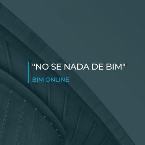 No se nada de BIM